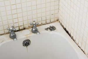 bathroom mold kearney, bathroom mold hastings, bathroom mold cleanup