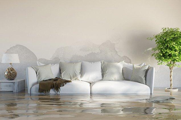 hastings water damage repair