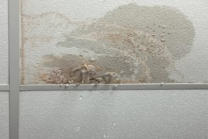 water damage grand island, water damage repair grand island, water damage cleanup grand island